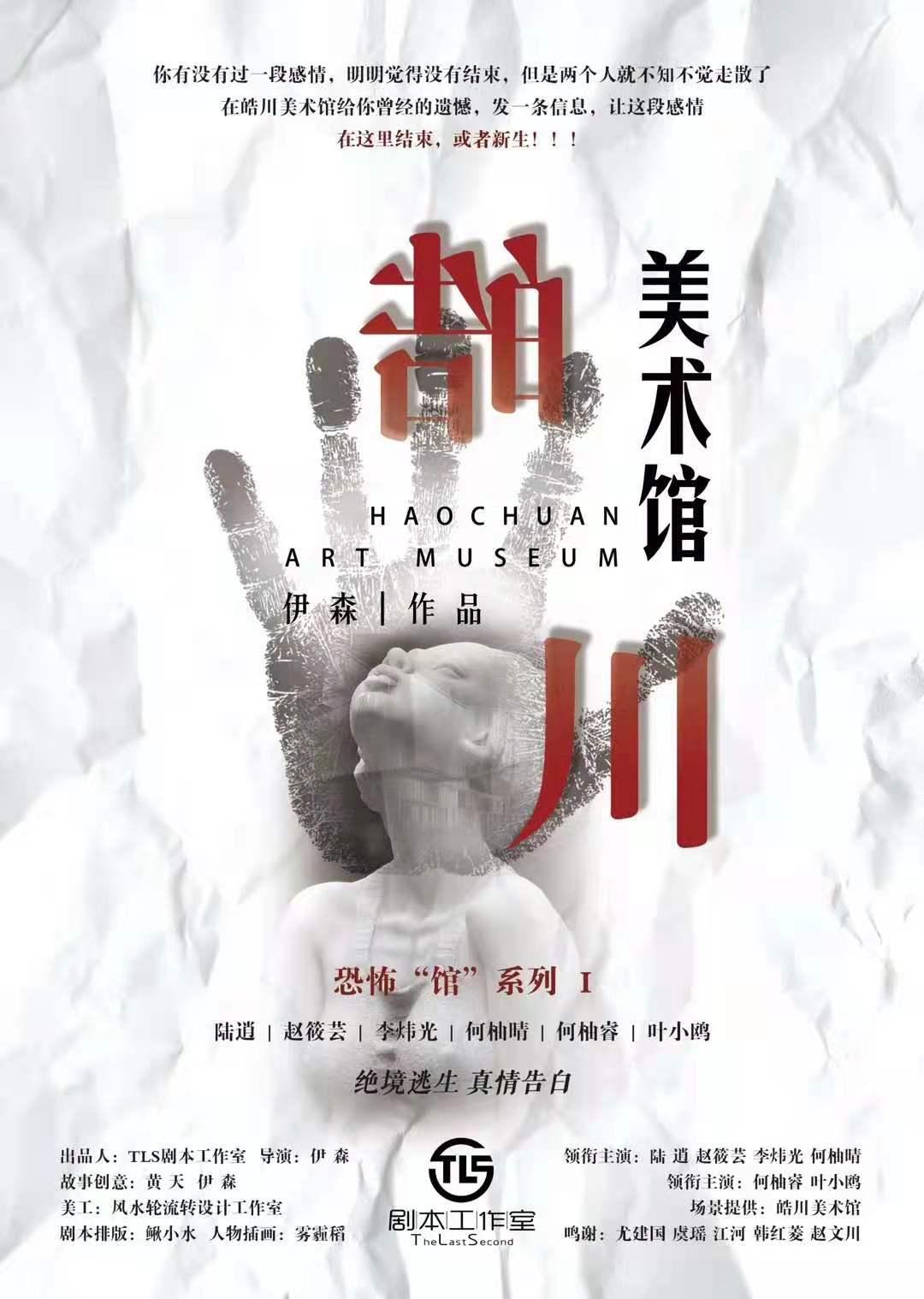 皓川美术馆海报图