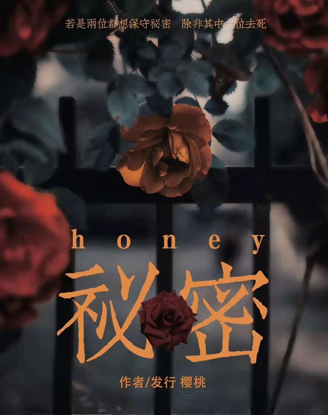 秘密/Honey海报图